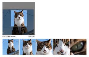 画像加工 cropbox.js
