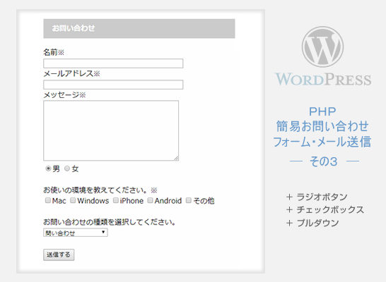 Wordpress 自作フォーム (チェックボックスなど)